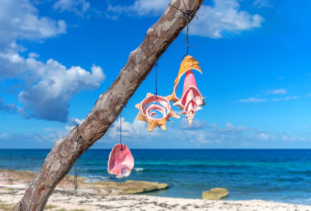 5 platillos que debes probar mientras estés en Cancún
