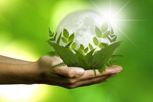 Materiales de construcción para una arquitectura sostenible